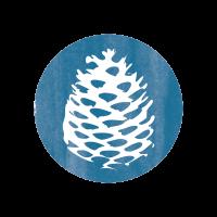 pin-bleu-foret-communication-environnement